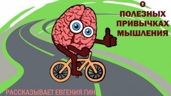 Полезные привычки мышления. Запись вебинара Евгении Гин