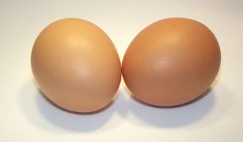 Такие разные яйца: найди 10 отличий
